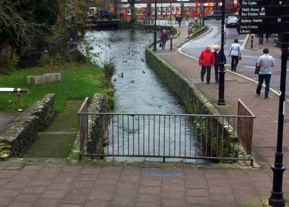 Town Mills Andover ducks